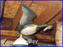 Vintage very rare Folk Art flying Merganser working original paint Duck Decoy